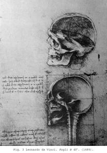 Leonardo da Vinci. Fogli B 40r. (1489).