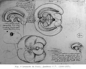 Fig. 4 Leonardo da Vinci. Quaderni V 7r. (1504-1507).