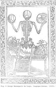 Fig. 6 Jacopo Berengario da Carpi. Isagogae breves. (1523).